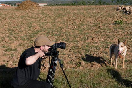 realização audiovisual